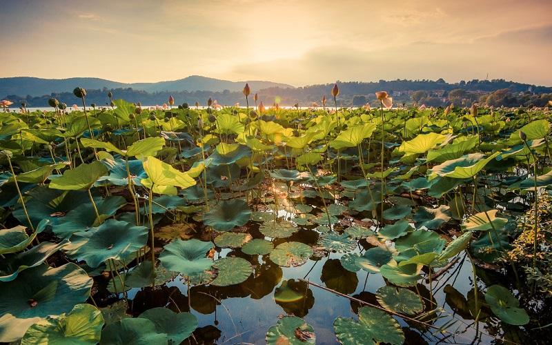 Lake Comabbio