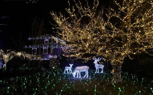 Lights of Leggiuno