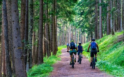 Escursioni in Mountain Bike in provincia
