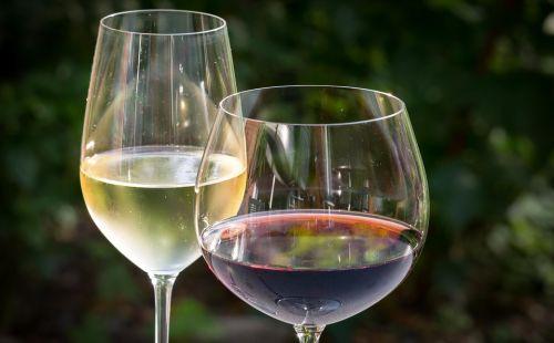 Un Lago di Vino - 2° edizione
