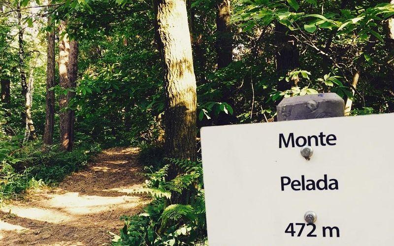 Monte Pelada
