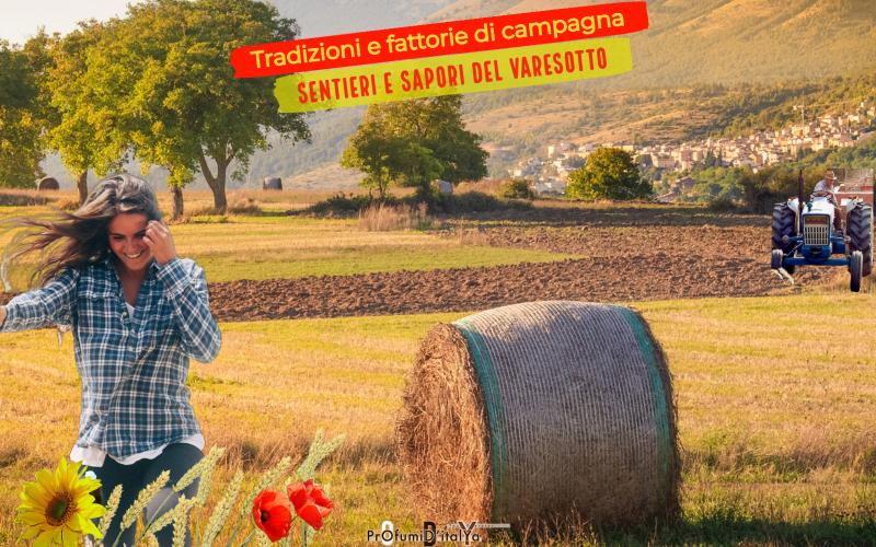 Sentieri e sapori del Varesotto:Tradizioni e fattorie di campagna
