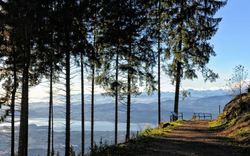 Eolo Campo dei Fiori Trail