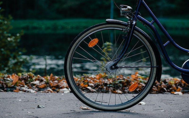 In bici nella terra dei Laghi - da € 10,00