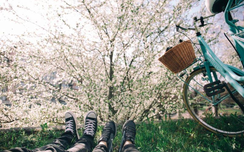 Ciclabile del parco lombardo del Ticino