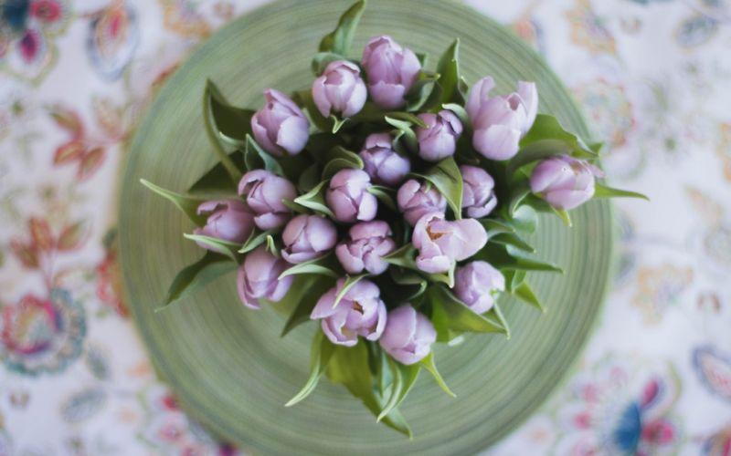 Osteria della Pista - Pranzo di Pasqua - da €55