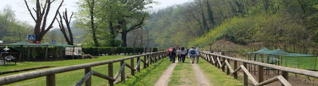La Via Francisca del Lucomagno